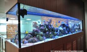 沉木青龙石造景缸与商业空间-09