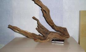 请大家看这两块沉木适合造景吗