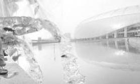 奥运水滴喜迎锦鲤2008尾(图)