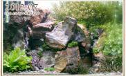 木化石水草缸造景沉木水草泥化妆砂青龙石60CM尺寸设计