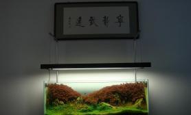 ADA 2010 参赛作品————(暖春)