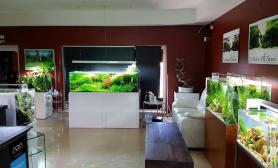 国外精品水景店一些优秀造景展示图