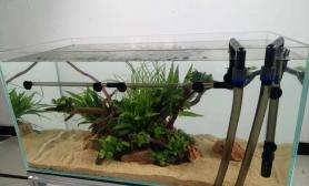这样的草缸水草缸这样的过滤桶水草缸如何?
