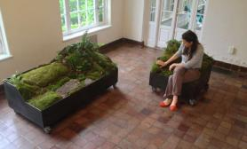莫丝苔藓做成的沙发~~哈哈哈