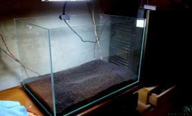 新开的缸水草缸水平不好水草缸多指点