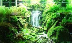 独树一帜的水景瀑布造景