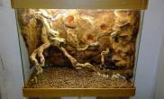 泡沫背景板杜鹃根沉木素材制作
