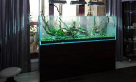 水草缸造景沉木水草泥化妆砂青龙石150CM及以上尺寸设计61