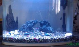 鱼缸造景45*25cm小缸