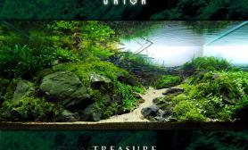 <<  源  >>  - Treasure