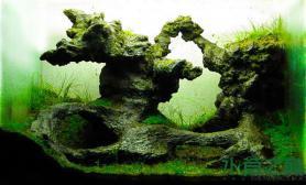 鱼缸造景这个水草缸里是什么石头?