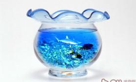 如何挽救混浊的鱼缸水