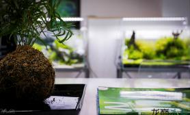 GREEN AQUA工作室日常一览