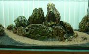 水草缸造景沉木水草泥化妆砂青龙石150CM及以上尺寸设计39