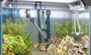 水草造景感觉哪儿有点儿别扭鱼缸水族箱怎么改进?