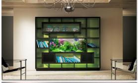 造景缸与家装设计案例照片