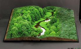 请安静阅读这一本森林之书……