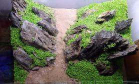 片状的青龙石造景
