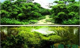如果有下辈子水草缸我愿做只鱼儿水草缸游走在这美轮美奂的水草间沉木杜鹃根青龙石水草泥沉木杜鹃根青龙石水草泥