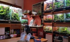 雨林专卖店工作室