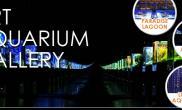 Sky Aquarium(天空的水族) - 草缸部分文字&图片