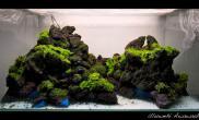 水草缸造景沉木水草泥化妆砂青龙石90CM尺寸设计74