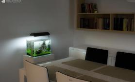 沉木青龙石造景缸与家装空间-26