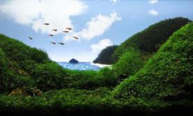 沉木青龙石水草造景90CM尺寸设计37