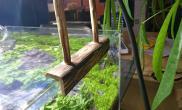 精致器材猎奇28水草缸造景实木LED灯架