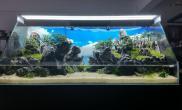 景深玩到极致的石景水陆缸