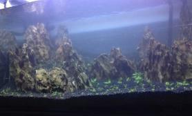 松皮石造景缸鱼缸水族箱