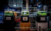 ACT Aquascape Contest 2014