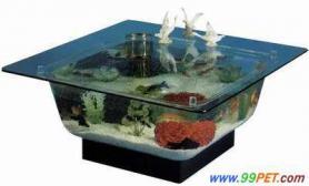 美丽的茶几型海洋生物缸(图)
