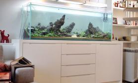 沉木青龙石造景缸与家装空间-45