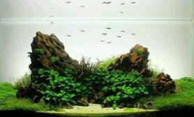 松皮石经典造景造型鱼缸水族箱摆件装饰