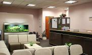 沉木青龙石造景缸与商业空间-24