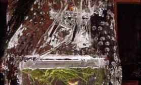 冰雕鱼缸养活鱼(多图)