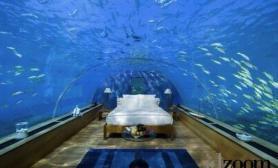 建在海底的酒店房间就是水族馆(多图)