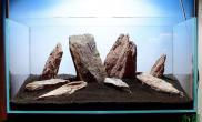 这种直愣愣的石材水草缸你会如何组合呢?
