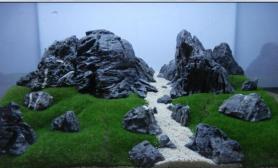 锦州简单哥摆石造景精致无比