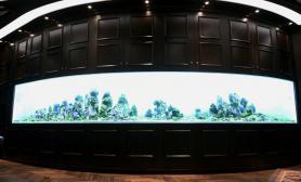 《谁与争峰》~八米自然水景缸建缸记实鱼缸水族箱鱼缸水族箱鱼缸水族箱