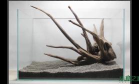 这个沉木摆放水草缸求给意见水草缸另外求推荐种什么水草沉木杜鹃根青龙石水草泥