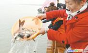 太湖放鱼节灵山码头开幕将投放鱼苗1200万尾(图)