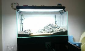 90 45 45青龙石爬地珍珠缸鱼缸水族箱求轻拍鱼缸水族箱