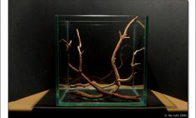 水草缸造景沉木水草泥化妆砂青龙石45CM及以下尺寸设计03