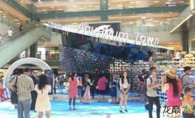 香港偶遇水族展览鱼缸水族箱