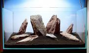 水草缸造景沉木水草泥化妆砂青龙石90CM尺寸设计62