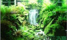 【赢阳光几何全光谱LED】有水则灵水草缸我的梦想水草缸