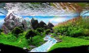 水族箱造景阿尔卑斯山的吟唱---水草造景中的杰作