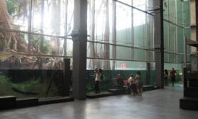 热带雨林植物园震撼的现实版水陆缸